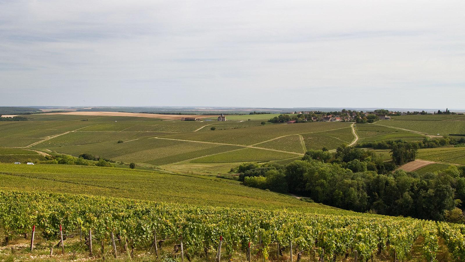 Bilde fra vingården Ch. du Val de Mercy